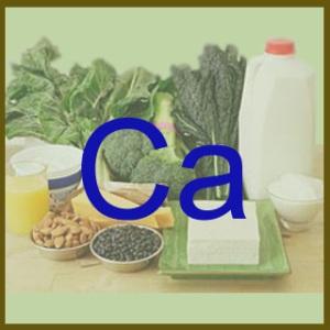 245558-Funções-do-Cálcio-no-Organismo-2